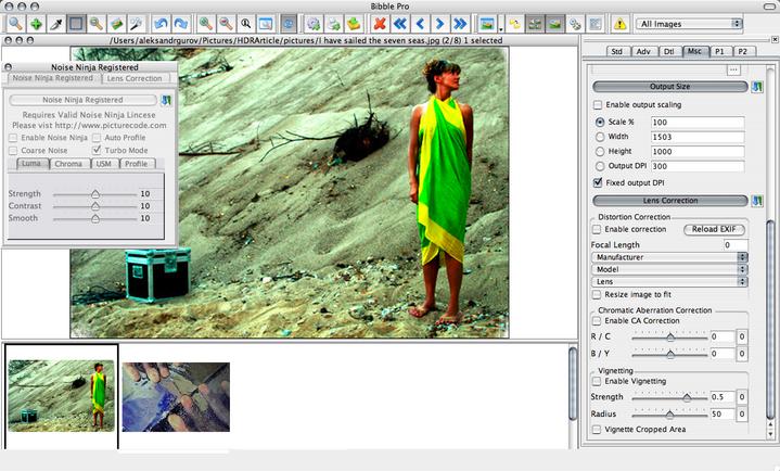 RAW-конвертер (converter raw) - сравнение программ-конверторов файлов raw-формата (Bibble Pro, Lightroom, Adobe Camera RAW, Aper